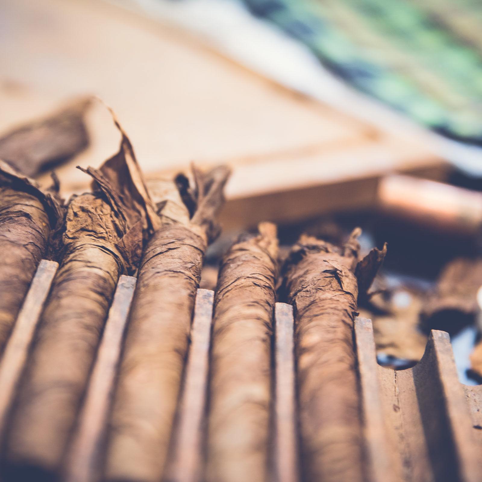 Zigarrendreher | Zigarren | Drehen | Zigarrenroller | Zigarrenrollerin | Zigarrendreherin | Mieten | Anfragen | Trocadero | Handgemacht | Zigarren | Shop | Geschenk | kaufen | Robusto | Corona | Torpedo | Banderole | Tabak