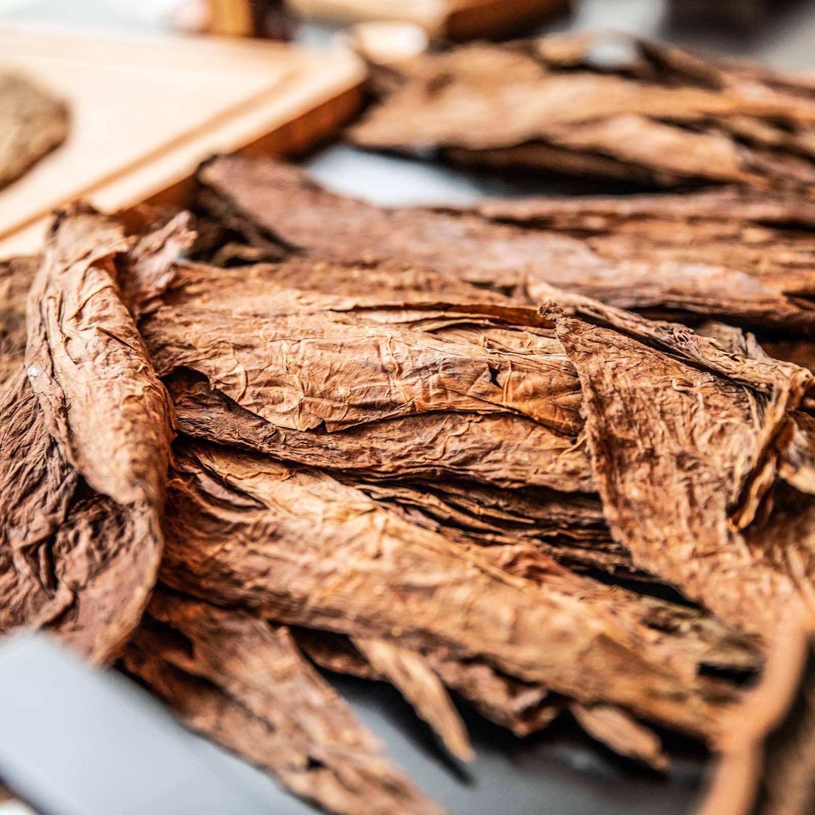 Zigarrendreher | Zigarrenroller | Trocadero | Zigarrenrollerin | Zigarren | Tabak | Zigarren | Banderole | Bauchbinde | drehen | Tabak | Sumatra | Brasilien | Cuba | Indonesien | Tabakpflanzen | Brasilien | Cuba | Brasilien