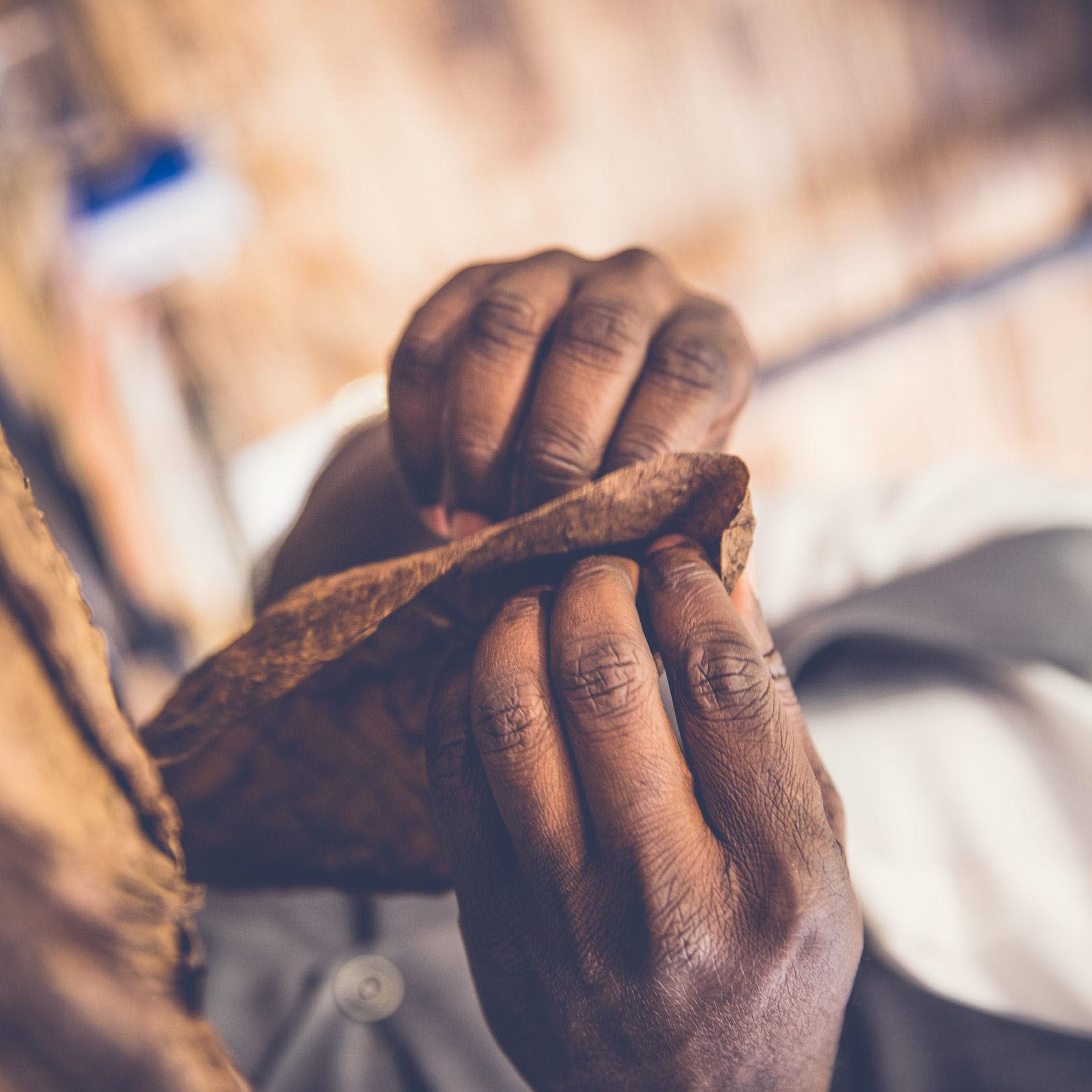 Zigarrendreher | Zigarrenroller | Zigarrenrollerin | Trocadero | Kaufen | Shop | Buchen | Mieten | Handgemacht | Zigarren | Churchill | Robusto | Corona | Robusto | Banderole | Bauchbinde | drehen | Tabak | Cuba | Brasilien