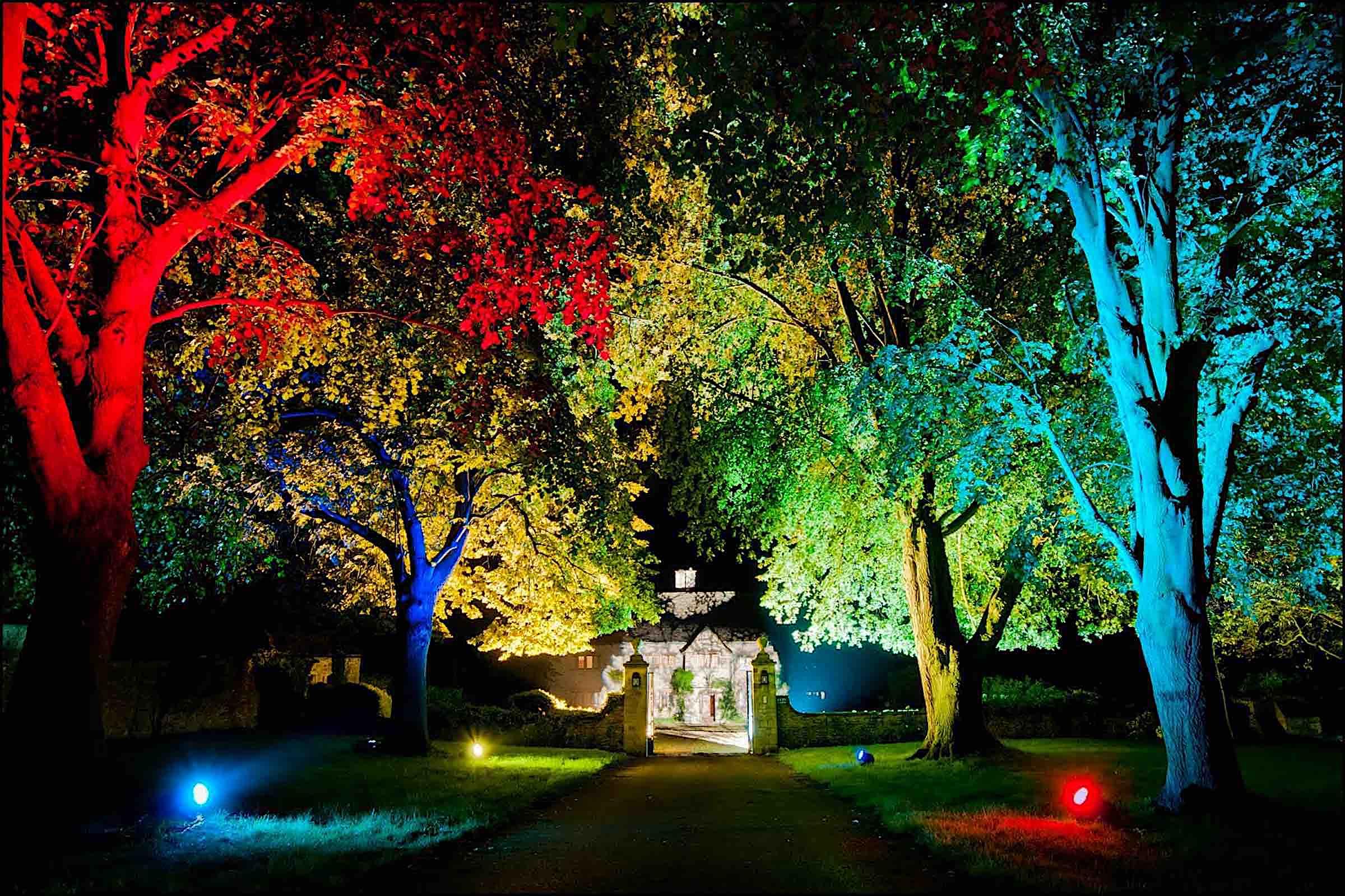Lichttechnik  Outdoor  Bäume  Beleuchtung  Scheinwerfer  Lichttechnik  Uplight  Licht  Konzept  Illumination  Veranstaltungstechnik  Firmenkunden  Eventtechnik  Eventaustattung  Mieten  Buchen